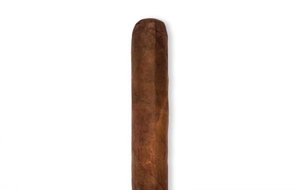 Toro Gorda